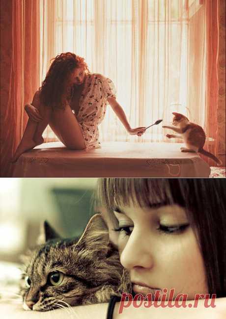 Как избавиться от кошачьего запаха. Суперактуально!