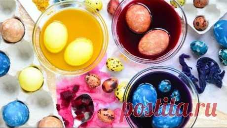 ¡La coloración de los huevos por la col, la remolacha, la cúrcuma ☆ Solamente los colorantes naturales!