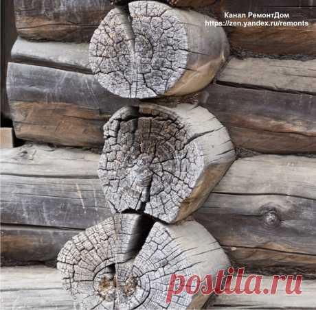 Трещины в бревне, брусе теперь не проблема. Пропитка для дерева — старый дедовский рецепт от гнили, плесени Дерево давно используется для строительства и для отделки. Дерево требует определенной защиты, ведь это не камень. Материал «дышит», в нем любят заводиться насекомые, плесень, грибок. В результате древесина может растрескиваться, гнить, чернеть, покрыться трещинами. Как защитить дерево? От... Читай дальше на сайте. Жми подробнее ➡