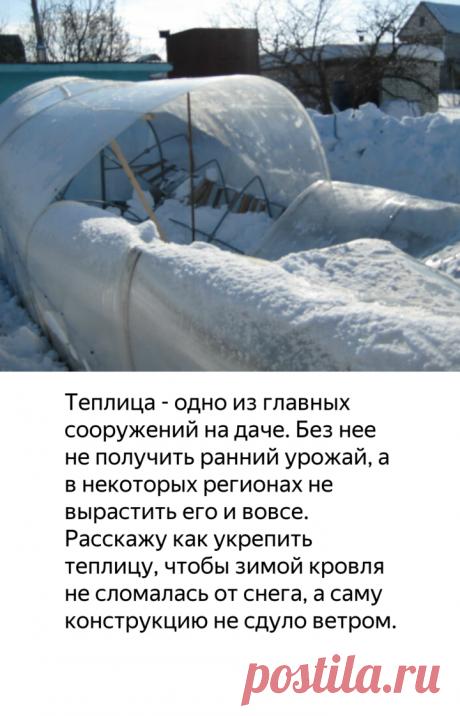 Что сделать, чтобы зимой снег и ветер не сломали теплицу из поликарбоната? Как ее укрепить? | садоёж | Яндекс Дзен