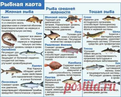 Кулинария>Рыбная карта