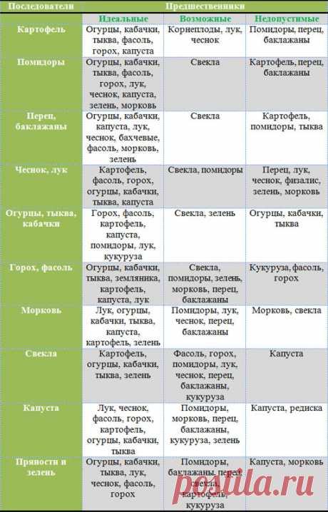 Севооборот на огороде, таблица посевов и посадок