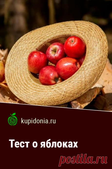 Тест о яблоках. Развлекательный тест о яблоках. Проверьте свои знания!