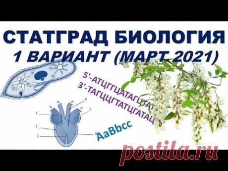 СТАТГРАД БИОЛОГИЯ   1 вариант   Март 2021