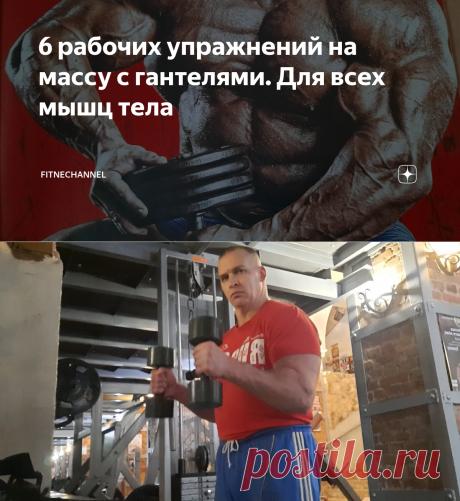 6 рабочих упражнений на массу с гантелями. Для всех мышц тела | fitnechannel | Яндекс Дзен