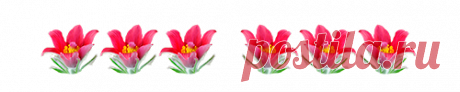 Программы | Записи в рубрике Программы | Дневник Шадрина_Галина