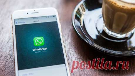 Как добавить контакт в Ватсапе (WhatsApp) по номеру телефона на Айфоне и Андроиде
