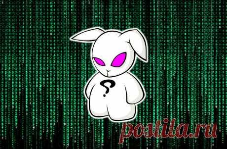 Как уберечься от нового вируса Bad Rabbit (злобный кролик), который атаковал Россию и Украину?