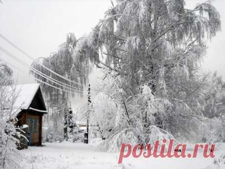 Как выжить без электричества в занесенной снегом деревне / выживание / 7dach.ru
