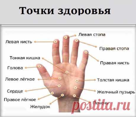 МАССИРУЯ ПАЛЕЦ ПО 1 МИНУТЕ В ДЕНЬ, ПОРАЗИШЬСЯ ТОМУ, ЧТО СЛУЧИТСЯ С ТВОИМ ТЕЛОМ   Точки на большом пальце отвечают за сердце и легкие. Учащенное сердцебиение можно постепенно исправить с помощью массажа этого пальца.   Указательный палец  Показать полностью…