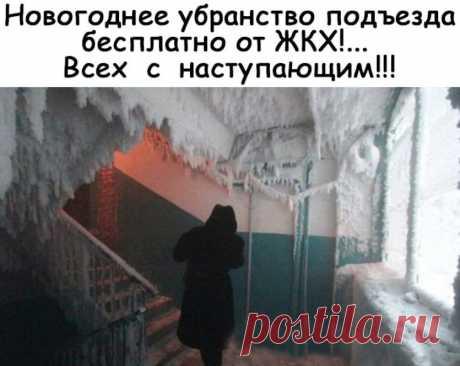 Подборка картинок))))#168 | Блог Михаил Дмитриев | КОНТ