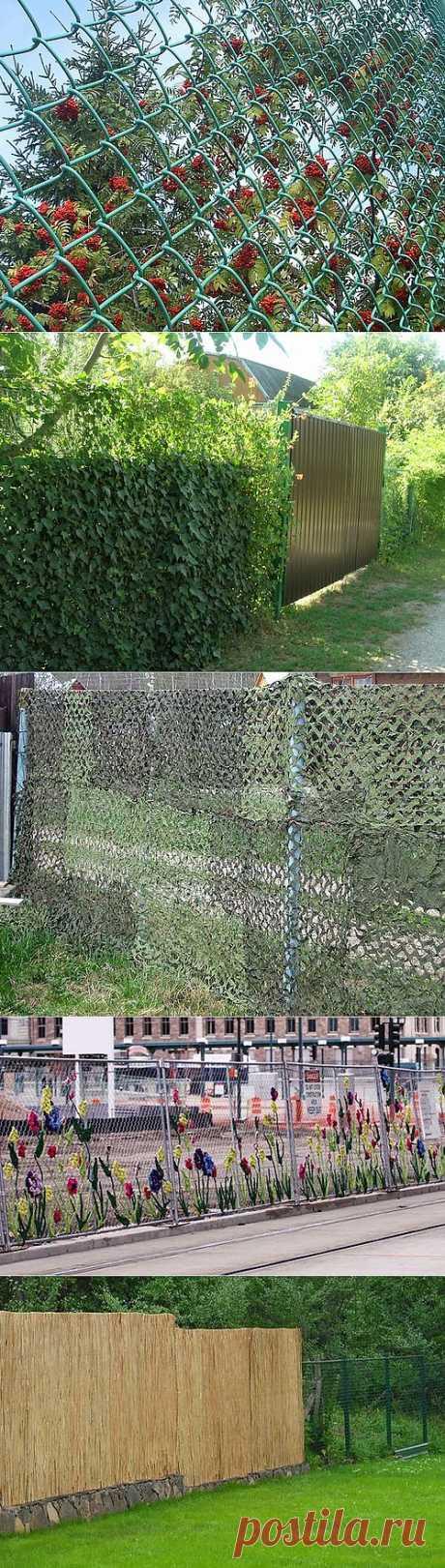 8 способов, чем закрыть забор из сетки рабицы
