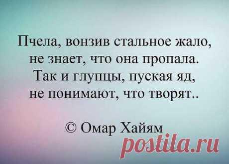 Смысл жизни. ...