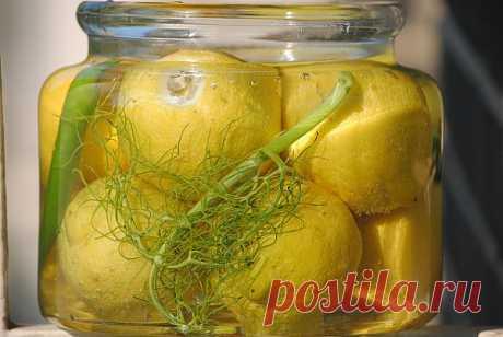 Los limones Magribsky. ¡Hacemos fementar! ¿Gusta?
