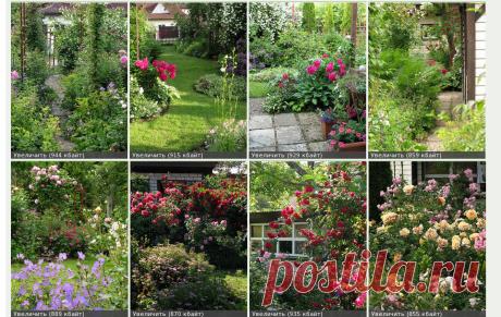 Проекты-онлайн • Просмотр темы - Просто сад.