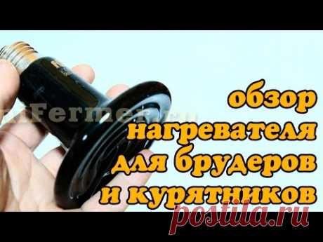 Керамический ИК нагреватель Е27 для брудера и курятника. Простой и надежный.