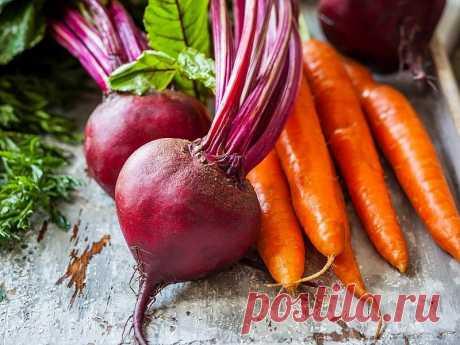 Какую подкормку необходимо внести для моркови и свеклы в открытом грунте в июне.