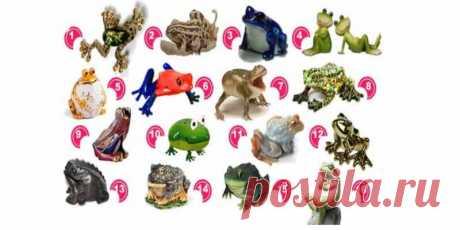 Тест: Выберите лягушку и узнайте ваш путь к богатству