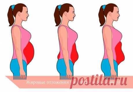 Жировые отложения у женщин за 50: 6 советов | Здоровье вашего организма | Яндекс Дзен