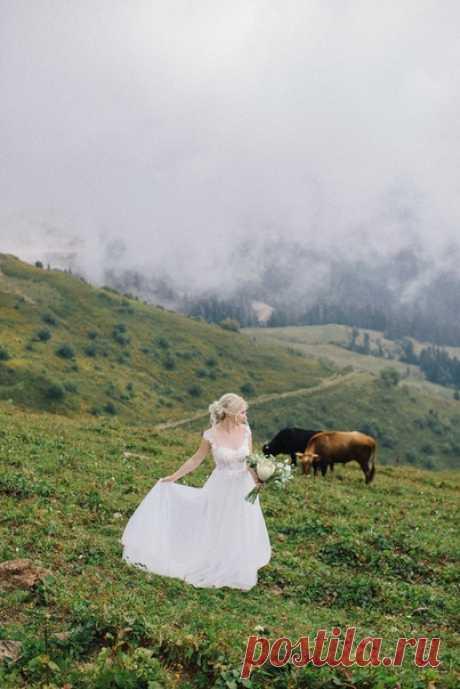 Атмосфера туманных гор 🌫💕