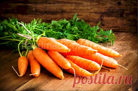 Когда сеять морковь по лунному календарю в 2021 году: сроки, благоприятные дни