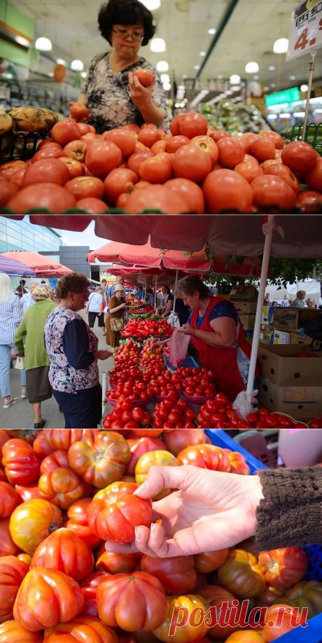Как научиться выбирать вкусные помидоры - Я узнаю