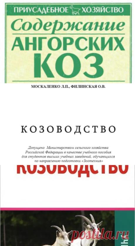 Содержание ангорских коз - Бондаренко С.П.