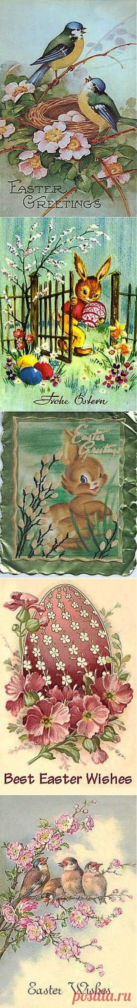 Here Comes Peter Cottontail on Pinterest
