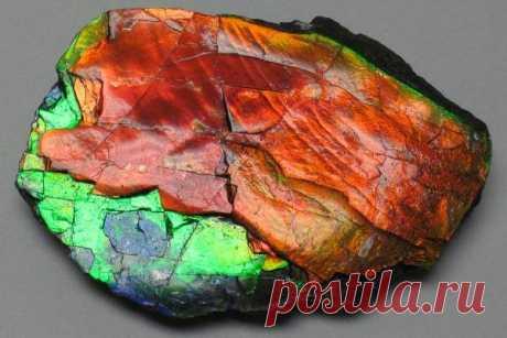 Камень аммолит: свойства, кому подходит по знаку зодиака и имени, месторождения, описание и значение, применение