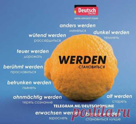 (3) Разговорная практика на немецком языке