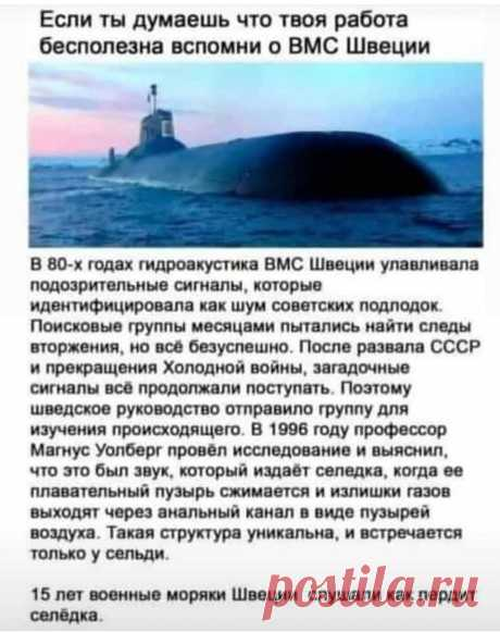 358. КАРАнтинки, новости с юмором - Toxoff.net — КОНТ