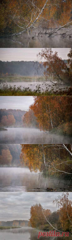 35PHOTO - Вейзе Максим - Состояние белорусской природы середины октября