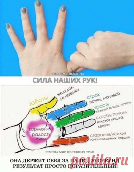 сила наших рук