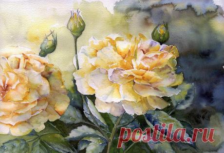 Художник Ивон Хэрри: прозрачность цветочных акварелей | Живопись | Яндекс Дзен