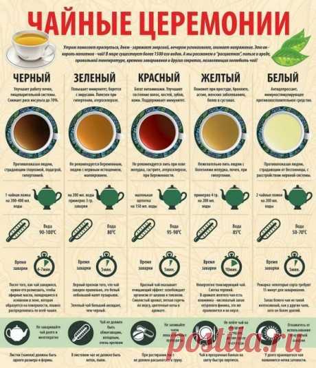 Как не промахнуться с чайной церемонией