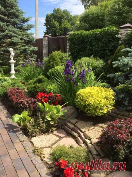 Хороший вопрос: «сад малого ухода» — сказки ли это: houzz_russia