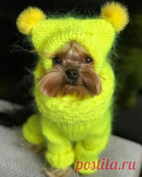 ღ- Я уже тепло одет и мне не холодно