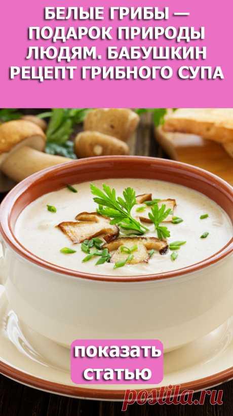 СМОТРИТЕ: Белые грибы — подарок природы людям. Бабушкин рецепт грибного супа
