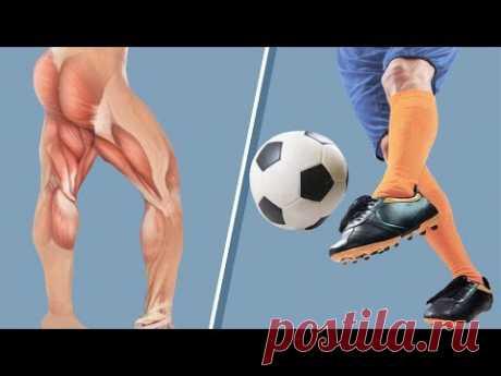 Проблемы передне-заднего равновесия. Тонус ягодичной мышцы, конструкция тенсегрити, мышечные цепи - YouTube