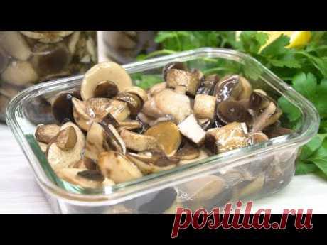 Самые вкусные Маринованные грибы на зиму, они как свежие!
