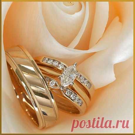 Badi.ru : Открытки на свадьбу