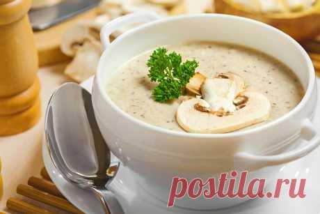 Рецепты супа-пюре из шампиньонов: со сливками и постного - Классический рецепт супа-пюре из шампиньонов лаконичен, но оставляет простор для фантазии. Добавив в привычное блюдо обжаренный бекон, щепотку муската или толченые орехи, вы получите совершенно новый вкус. Классический суп не... Read more »