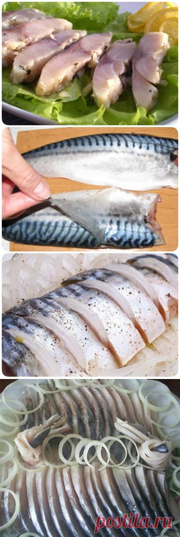 Как вкусно засолить не дорогую рыбу дома — Скумбрия в пряном и пикантном маринаде - interesno.win