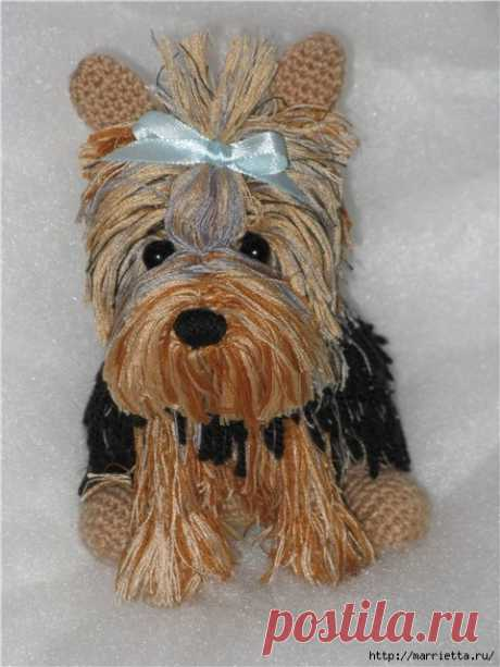 Dog a Yorkshire terrier – we knit a hook a soft toy the hands