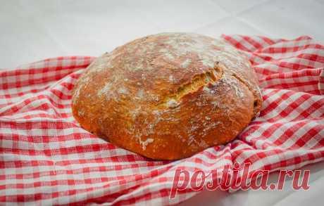 Хлебушек без печки и ухвата: выпекаю такой почти каждый день. Рецепт для тех, кто не любит хлопоты | Дауншифтеры | Яндекс Дзен