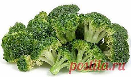 """We grow up broccoli\"""" Sadoved"""