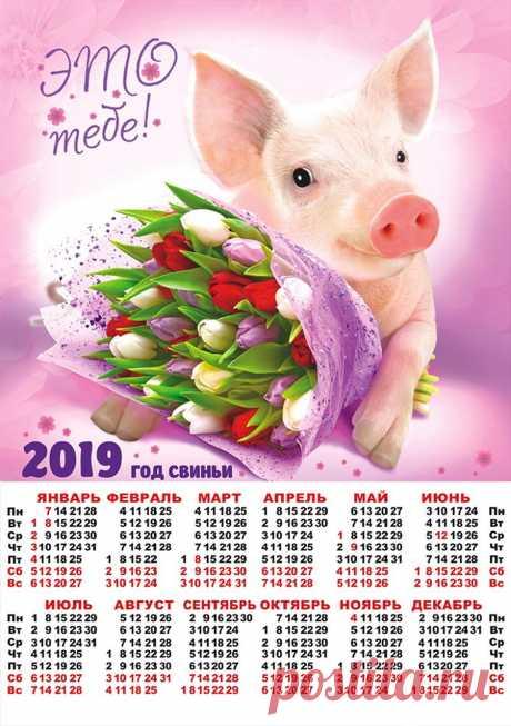 Символ 2019 года - СВИНЬЯ. Календари.