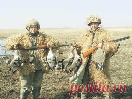 Об оптимальных сроках весенней охоты То, что на каждый вид пернатой дичи должны быть отдельные оптимальные биологически грамотные сроки охоты, ни у кого не вызывает сомнений.Фото Дмитрия