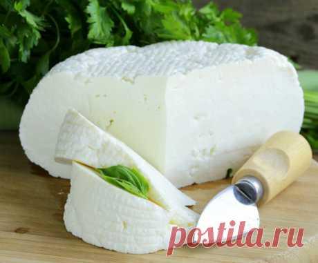 Домашняя брынза: лучшая замена магазинным сырам! | Самые вкусные кулинарные рецепты