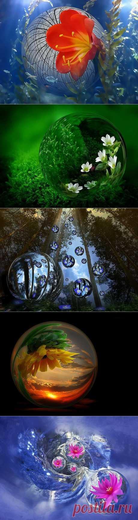 Прозрачная капелька воды... Такая малость, всего лишь одна единственная буква в  поэме природы о красоте. Росинка, наполнившая чашечку цветка и вобравшая в себя огромное небо. Капля дождя, которая заканчивая свой путь по  лабиринту веток, вдруг замерла и в зеркальной сфере отразила целый мир.  Брызги фонтанов, водопадов, гирляндами спадающие в радужном свете, и в  каждой капельке своя радуга. А ведь можно пройти и не заметить....  Поэтому фотограф Manuela Moya их увеличила для нас.